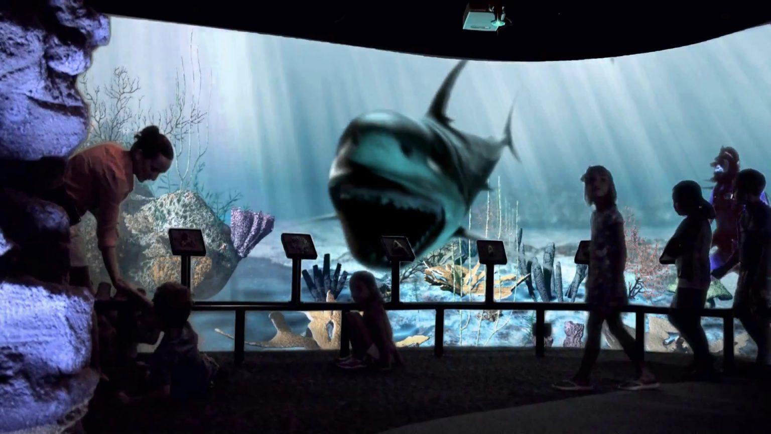 The North Carolina Aquarium At Fort Fisher The Elumenati